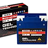 Panther GEL 51913 - 12 V / 19 Ah - 170 A/EN BMW...