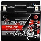 BlackMax YTZ7S Motorradbatterie GEL 12V 6Ah...