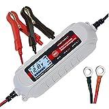 Dino KRAFTPAKET 136312 Batterieladegerät...