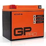 Batterie 12V 10Ah Gel GP-Pro (TYP -...