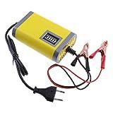 D DOLITY Intelligentes KFZ Motorrad Batterie...