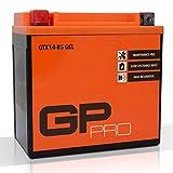Batterie 12V 14Ah Gel GP-Pro (TYP - GTX14-BS /...