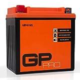GP-PRO GB9-B 12V 9Ah Gel-Batterie (Ähnlich YB9-B...
