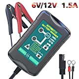 LST 1.5A Batterie Ladegeräte 6V/12V, Universell...