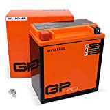 GP-PRO GTX16-BS 12V 14Ah GEL-Batterie (Kompatibel...
