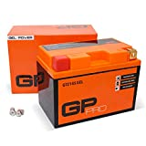 GP-PRO GTZ14S 12V 11.2Ah GEL-Batterie (Kompatibel...