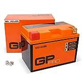 GP-PRO GTZ14S 12V 11.2Ah GEL-Batterie (Ähnlich...