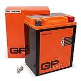 GP-PRO GB14L-A2 12V 14Ah GEL-Batterie (Ähnlich...
