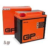 GP-PRO GB9-B 12V 9Ah GEL-Batterie (Kompatibel mit...
