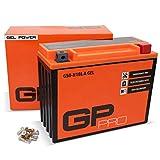 GP-PRO G50-N18L-A 12V 21Ah GEL-Batterie (Ähnlich...