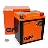 GP-PRO GB10L-B 12V 11Ah GEL-Batterie (Kompatibel...