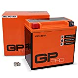 GP-PRO GTX14-BS 12V 14Ah GEL-Batterie (Kompatibel...