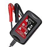 Loadchamp Automatik 6V 12V 1,5A (1500mAh) Batterie...