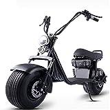 L&F X9 Harley Elektro-Auto-Batterie-Auto...