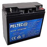 PELTEC@ Premium Blei AGM VLRA Akku Batterie 12V...