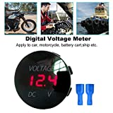 Longspeed 5-48V Digital Panel Voltmeter...