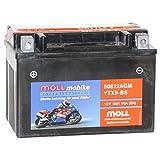 Moll mobike AGM Motorradbatterie YTX9-BS 8Ah 12V...