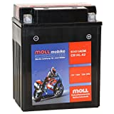 Moll mobike AGM Motorradbatterie CB14L-A2 13Ah 12V...