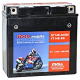 Moll mobike AGM Motorradbatterie YT14B-BS 11,5Ah...