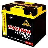 Panther Lithium Aufsitzmäher 12V 300A...