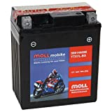 Moll mobike AGM Motorradbatterie YTX7L-BS 6Ah 12V...